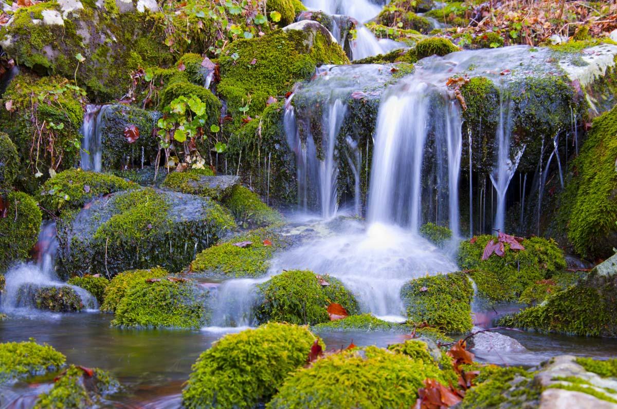 Acqua che non sia oligominerale ma ricca di calcio - Portano acqua ai fiumi ...