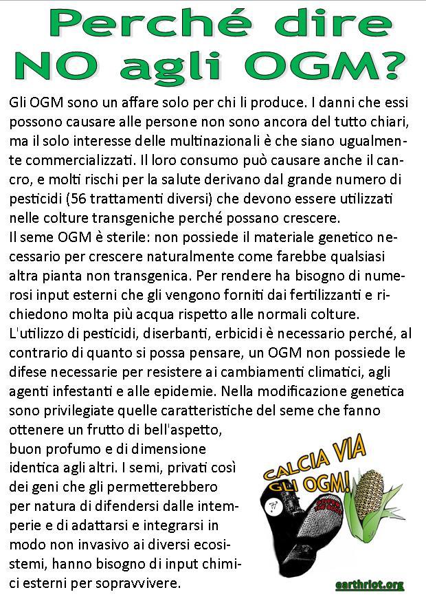 a6_ogm_fronte