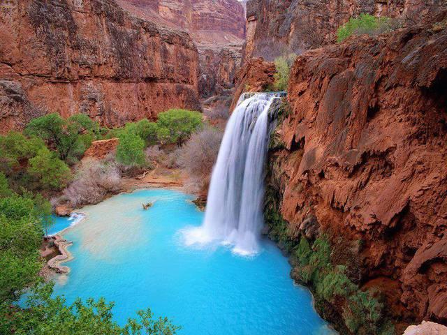 havasu-falls-arizona_3