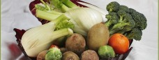 frutta-e-verdura-780x300