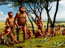 hominids-fruits-vegetables