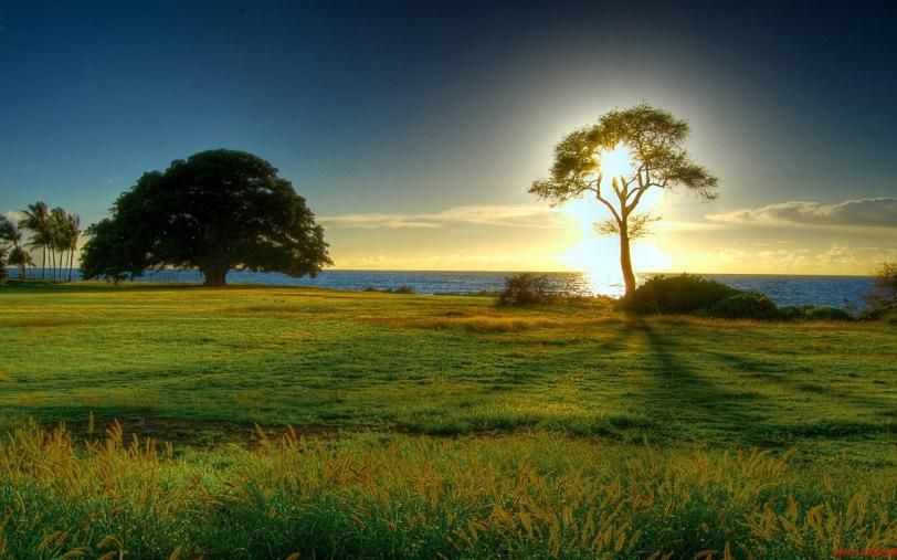 Beautiful natural scenery Wallpapers HD 2560x1600