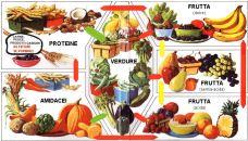alimentazione_combinazioni_shelton