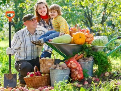 agricolturabiologica-590x442-e1455557358284