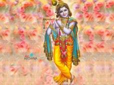 Lord Sri Krishna Gopala wallpaper